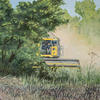 A combine emerging from behind the trees, dusty and hot. Oil on canvas