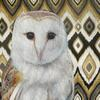 Barn owl on jazzy ground.  Prints and cards available.