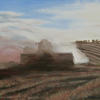 A combine,  leaving wide lines on the landscape after harvesting the wheat, dusty and hot. Oil on canvas