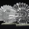 Lead crystal ammonites with silver leaf embellishment.