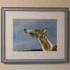 """""""Paula""""  Whippet portrait oil on paper. Framed"""