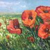 An oil painting or Poppies on 3mm board, 76cm x 51cm, framed in a black frame.  Available without frame.