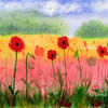 Poppy Summer ~ watercolour painting