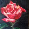 Love Rose /  acrylic on canvas paper