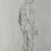 male nude. Pencil on paper