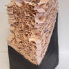 Ceramic and paper