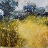 """SUNLIT CORNER""  acrylic on canvas"