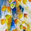 Blue Tit in Autumn  Watercolour 39 x 69cm. SOLD