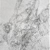 "Detail of Tree trunk drawing. 2H pencil on paper. Measuremt: W9.5""x H11.5"" unframed. This image can be seen on my video: DRAWING HVA 2020 https://vimeo.com/461593886"