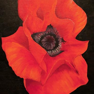 Poppy 1 by Avie Nash.  Oil on canvas board