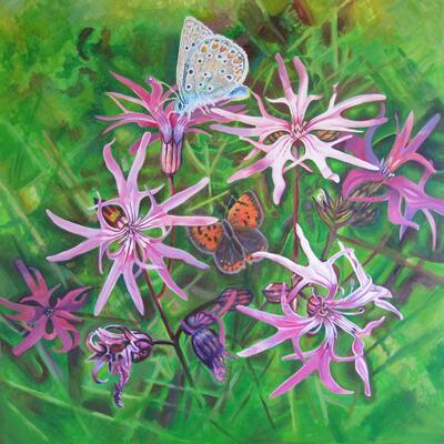 Ragged Robin - Acrylic Paint on Canvas
