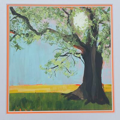 Colour Popping Oak