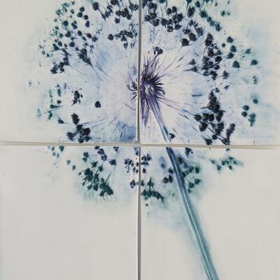 Allium and underglazes on framed porcelain tiles