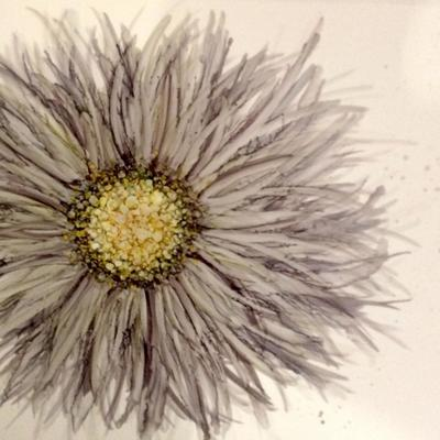 Grey Flower bloom. Alcohol inks