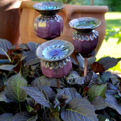 purple ceramic poppy seed heads in planter