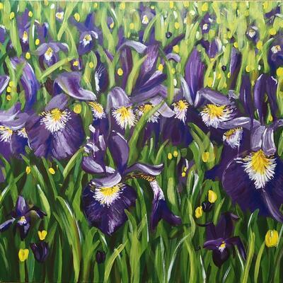 Away in the Iris Field (80x60cm) Vibrant landscape painting of Iris flowers