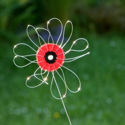 Poppy stem with monofilment petals glistening in the sun, handwoven by Lucy Sugden