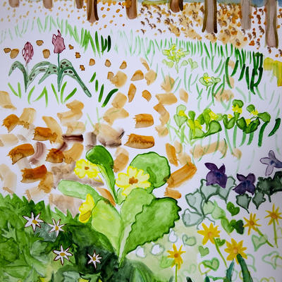 Primrose Wood: drawn from a memory of a walk in a wood