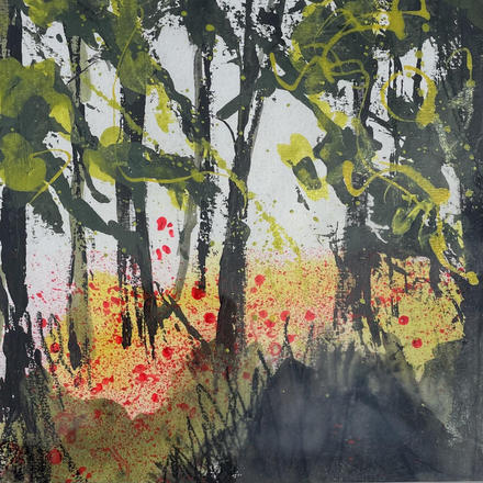 Trees overshadowing bright red poppies