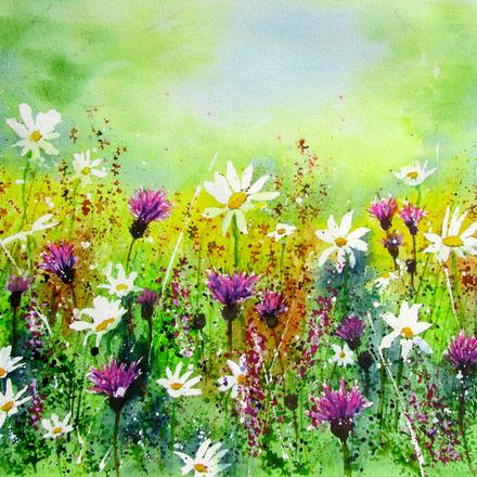 Daisies and Meadow Thistles. Framed Watercolour
