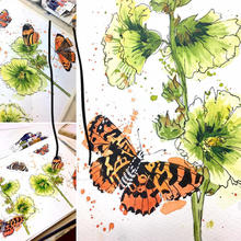 Butterflies and Hollyhocks in line and wash