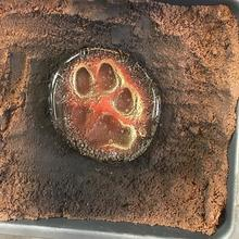 Paw print cast in glass - Sandcasting