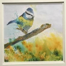 Brusho and watercolour blue tit